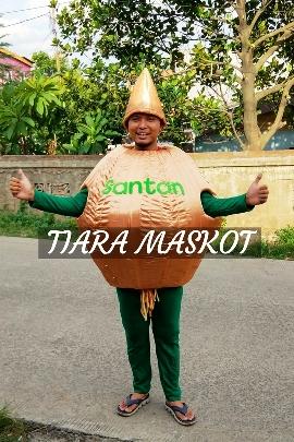 contoh Kostum maskot bawang